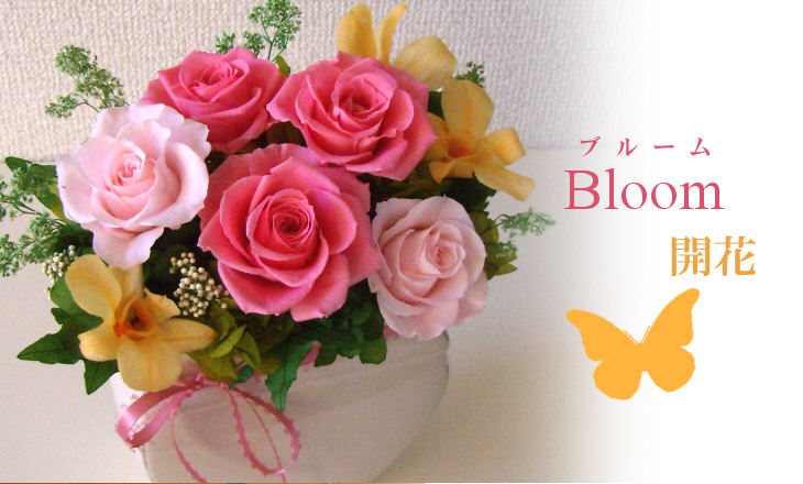 ブルーム(ピンク)【プリザーブドフラワー】