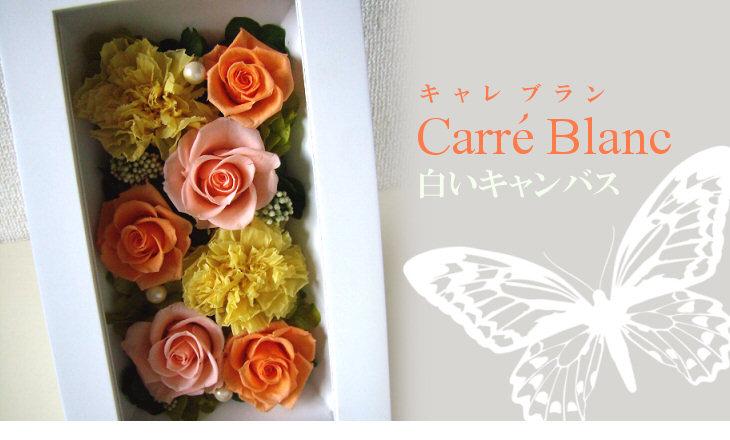 キャレブラン(オレンジ)【プリザーブドフラワー】
