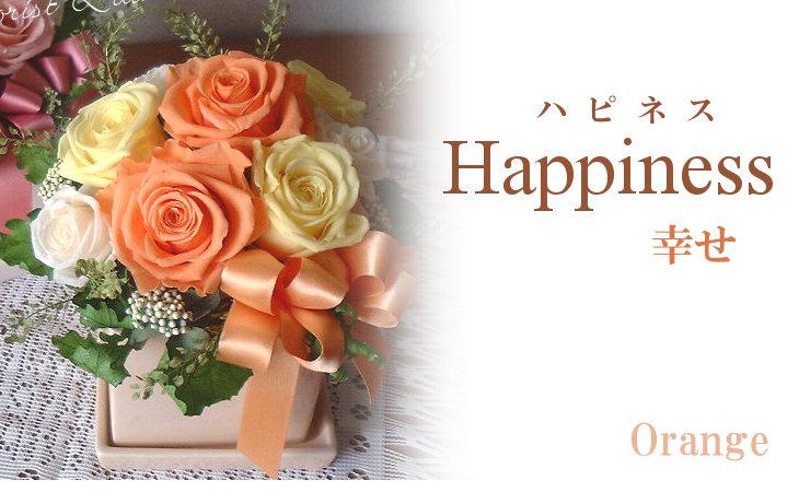 ハピネス(オレンジ)【プリザーブドフラワー】