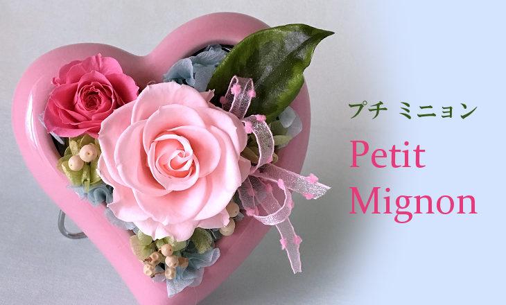 プチミニョン(ピンク)【プリザーブドフラワー】